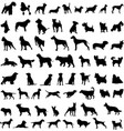 dog sillohuettes vector image vector image