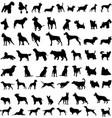 dog sillohuettes vector image