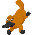 funny platypus cartoon swimming with smile vector image