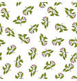 seamless pattern with spindle tree branches vector image vector image