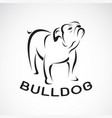 bull dog design on white background pet animal vector image vector image