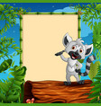 cartoon raccoon presenting on hollow log near the vector image vector image
