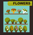 flowers shop with green indoor plants and charming vector image