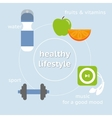 Infographic of healthy lifestyle vector image vector image
