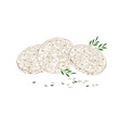 round rice crispbreads with leaves on white vector image