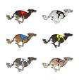 Running dog saluki breed vector image vector image