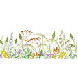 seamless border with autumn wild plants vector image vector image