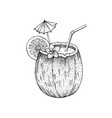 summer tropic coconut cocktail exotic fruit vector image