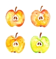 watercolor prints cut four apples vector image vector image