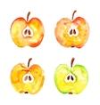 watercolor prints cut four apples vector image