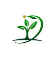 eco green success vector image vector image