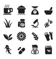 herb icon set vector image