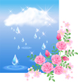 Rain and roses vector image vector image