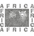 background leopard and text africa vector image