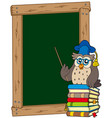 board with owl teacher and books vector image vector image
