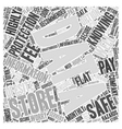 Knowing Your Data Is Safe Word Cloud Concept vector image vector image