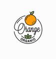 orange fruit logo round linear logo vector image vector image