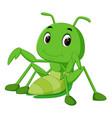 praying mantis cartoon vector image vector image