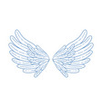 simple hand drawn feather open wings vector image vector image