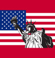 statue of liberty on the background vector image vector image
