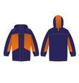 mens winter jacket hooded vector image