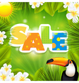 Green Sale Poster With Tropical Elements vector image