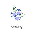 blueberry icon outline vector image