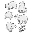cute polar bear flat hand drawn design vector image
