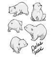 cute polar bear flat hand drawn design vector image vector image