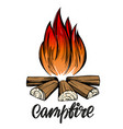 fire emblem rest in forest camping vector image