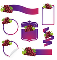 Grape Label Set vector image vector image