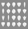 paper flowers petal and leaves set 3d vector image vector image