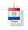 photo of paraguay flag vector image
