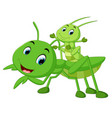 praying mantis cartoon vector image vector image