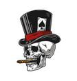 skull smoking cigar in top hat vector image vector image