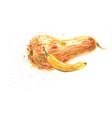 banana and squash pumpkin watercolor vector image vector image