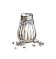 hand drawn salt shaker and crystals vector image vector image