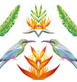 mirror birds tropical flowers and leaves white vector image