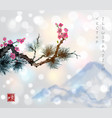 pine tree branch and sakura in blossom vector image