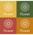 sunflower design template vector image vector image