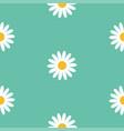 white daisy chamomile flower icon cute camomile vector image vector image