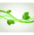 Abstract background with green leaves vector image vector image