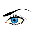 beautiful blue eye vector image vector image