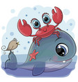 cartoon whale with crab and bird vector image vector image
