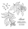 clove set vector image