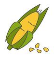 corn cob in husk flat icon vector image