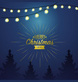 merry christmas card decoration design vector image vector image