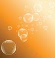 Orange bubble background vector image vector image