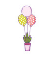 party balloons helium with houseplant vector image vector image