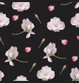 seamless pattern with hand drawn sakura flowers vector image